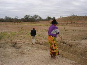 Chamia viaja a su territorio usurpado en la zona sur de Amotocodie, donde su casa, su bosque ha sido destruida por los ganaderos