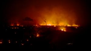 Informe Trinacional: Incendios y Deforestación en Territorios con Registros de Pueblos Indígenas Aislados