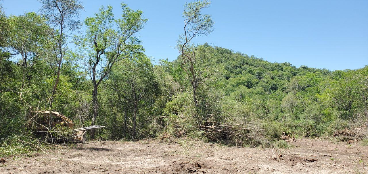 Deforestación en las faldas del cerro 7 Cabezas, en Alto Paraguay